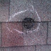 Shingle Damage from Hail Strike