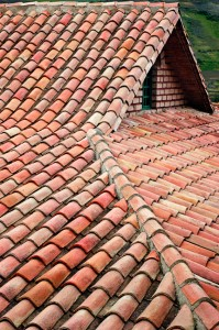 Detailed Photo of Ceramic Roof Shingles