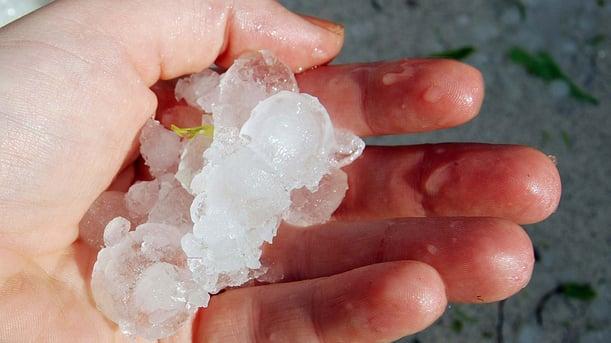 Hail Hand