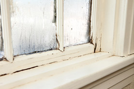 Stop Throwing Away Money with Old Windows